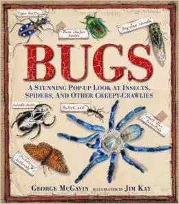 Bugs Pop-up Book by George McGavin and Jim Kay