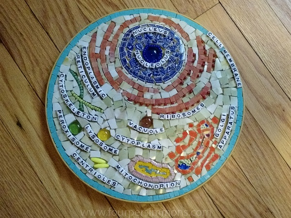 How to Make a Cell Mosaic by Rachel Nador on www.TheMakerMom.com
