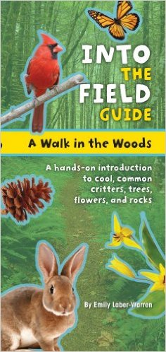 walk in the woods book