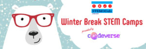 Winter break camps Chicago 2019